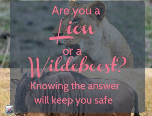 Are You a Lion or a Wildebeest? How knowing the answer will keep you safe.